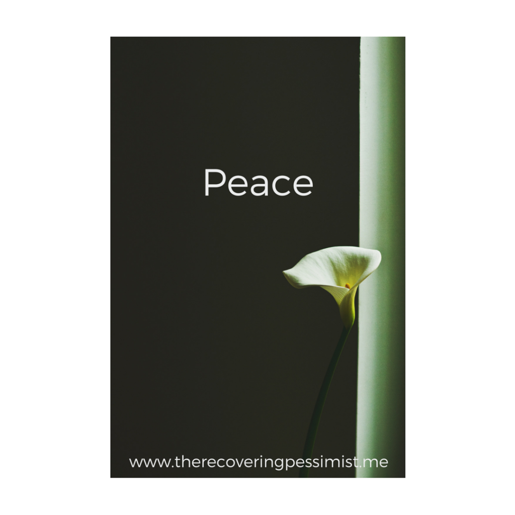 The Recovering Pessimist: Wisdom Wednesday #147 -- Seek peace in a world of chaos. | www.therecoveringpessimist.me #amwriting #recoveringpessimist #optimisticpessimist