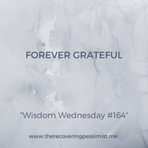 The Recovering Pessimist: Wisdom Wednesday #164 -- Always be grateful for the ups, the downs, and the (sometimes painful) lessons learned. You lived through it and have an opportunity to do better. | www.therecoveringpessimist.me #amwriting #recoveringpessimist #optimisticpessimist
